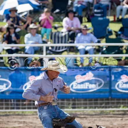 Rope and Tie APRA Finals 2016 - Warwick Rodeo & Campdraft