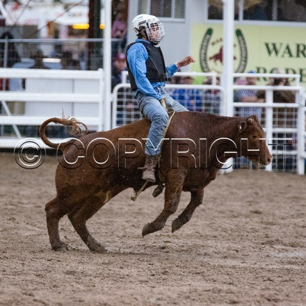 Junior Steer Ride 2nd section 2016 - Warwick Rodeo & Campdraft 2016