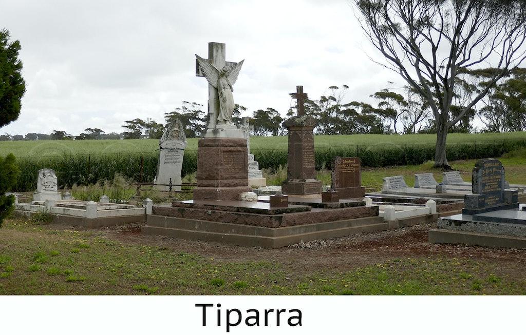 Tippara