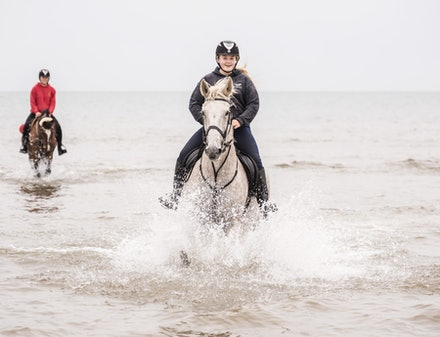 Splashing the horses