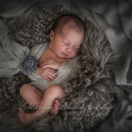 Newborns & Babies-2