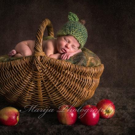 Newborns & Babies-1