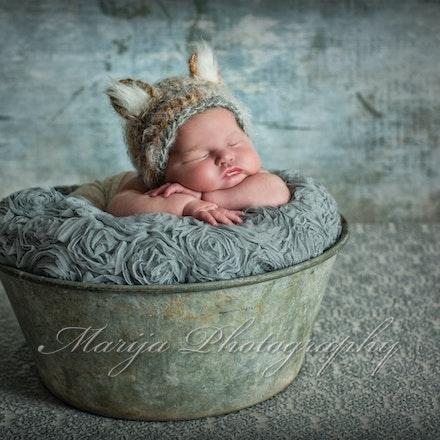 Newborns & Babies-10