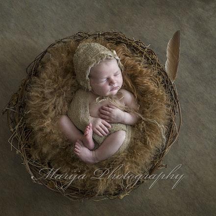 Newborns & Babies-28