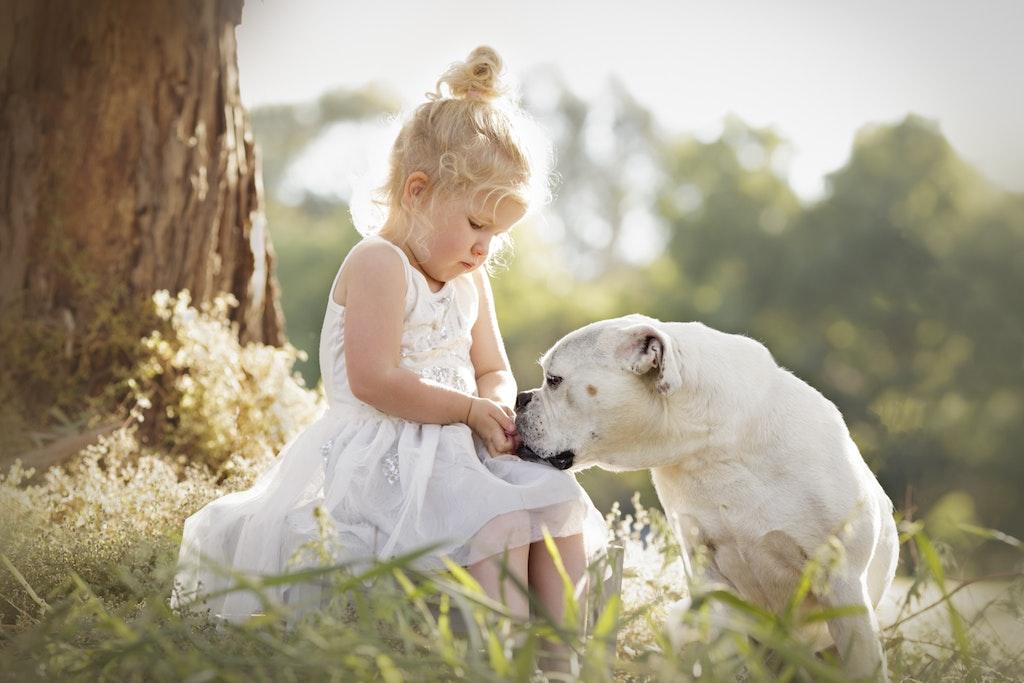 Child with Dog Sunset