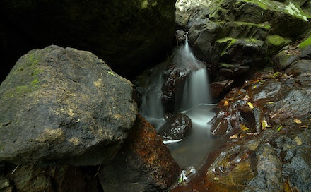 Little fall - This little waterfall is in the Kondalilla national park, Queensland.