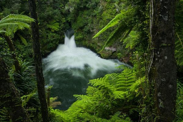 Tutea Falls - Gushing waters in verdure