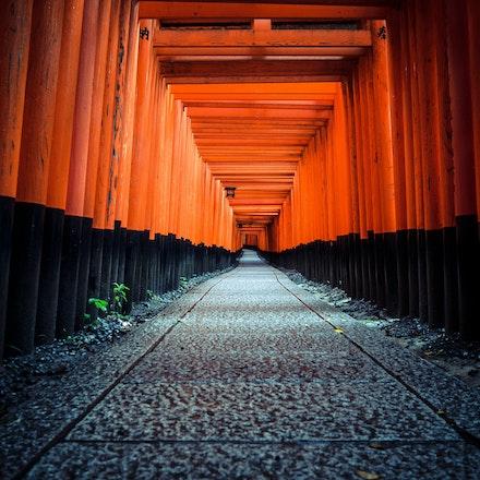 Japan - Cityscape and travel photography of Tokyo, Osaka, Kyoto & more