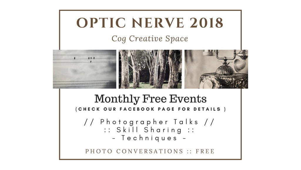Copy of OPTIC NERVE 2018