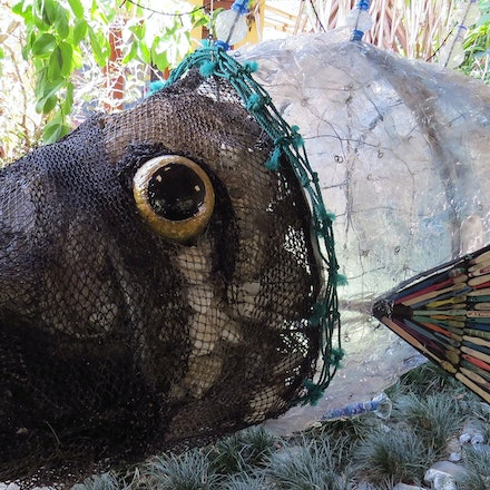 Plastic bottle fish. - Plastic bottle fish , recycled beach rubbish