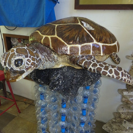 Turtle - (press for more images) Marine rubbish, recycled art