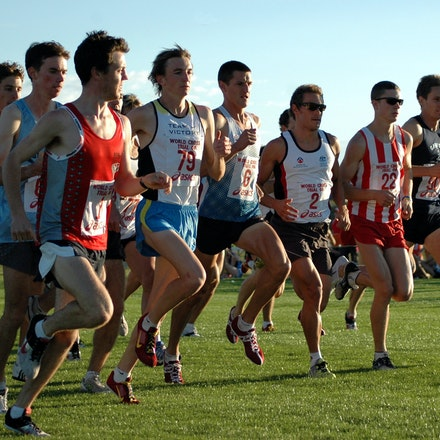 Men's race - The field in the men's race at the Australian trial for the 2008 World Cross Country Championships.