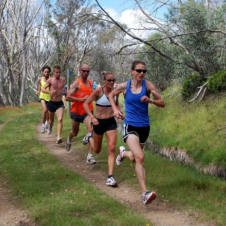 Marathoners - Nikki Chapple leads Benita Johnson and Steve Moneghetti during a training session at Falls Creek in December 2008.